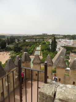 Alcázar de los Reyes Cristianos (182)