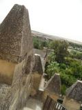 Alcázar de los Reyes Cristianos (183)