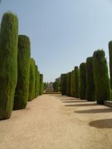 Alcázar de los Reyes Cristianos (45)