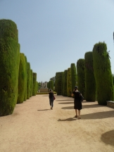 Alcázar de los Reyes Cristianos (46)