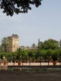 Alcázar de los Reyes Cristianos (69)