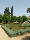 Alcázar de los Reyes Cristianos (73)