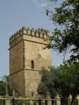 Alcázar de los Reyes Cristianos (85)