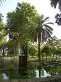 Casa Andalusi (1)