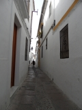 Casa Andalusi (10)