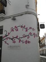 Casa Andalusi (7)