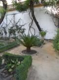 Casa de Pilatos (16)