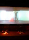 El Museo del Baile Flamenco (10)