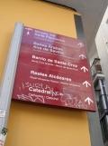 El Museo del Baile Flamenco (102)