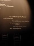 El Museo del Baile Flamenco (17)