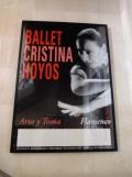 El Museo del Baile Flamenco (42)