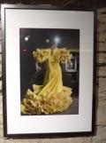 El Museo del Baile Flamenco (66)