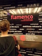 El Museo del Baile Flamenco (7)