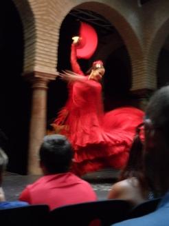 El Museo del Baile Flamenco (77)