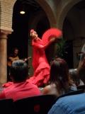 El Museo del Baile Flamenco (79)