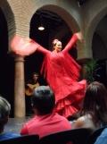 El Museo del Baile Flamenco (81)