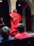 El Museo del Baile Flamenco (82)