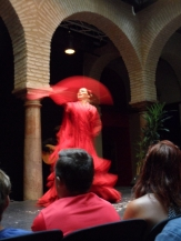 El Museo del Baile Flamenco (84)