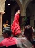 El Museo del Baile Flamenco (86)