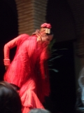 El Museo del Baile Flamenco (87)