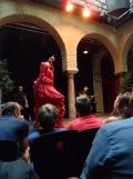 El Museo del Baile Flamenco (88)