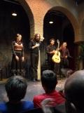 El Museo del Baile Flamenco (95)