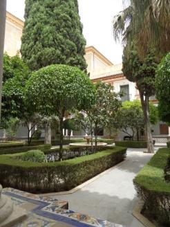 Museo de Bellas Artes (108)