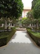 Museo de Bellas Artes (111)