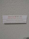 Museo de Bellas Artes (119)