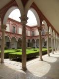 Museo de Bellas Artes (16)