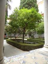 Museo de Bellas Artes (20)