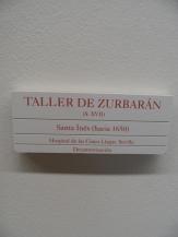 Museo de Bellas Artes (214)