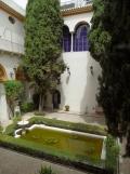 Museo de Bellas Artes (237)