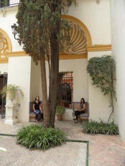 Museo de Bellas Artes (25)