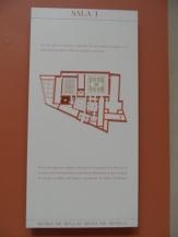 Museo de Bellas Artes (32)