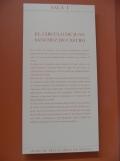 Museo de Bellas Artes (36)