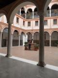 Museo de Bellas Artes (4)