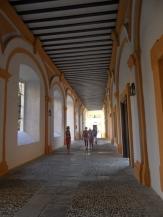 Real Alcázar de Sevilla (282)