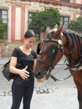Torero, souvenirs y Tapas (33)