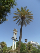 vers la Plaza de España (83)