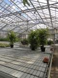 Centre Horticole de Paris (10)