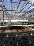 Centre Horticole de Paris (54)