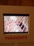 Paravents (38)