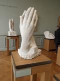 Musée Rodin (120)