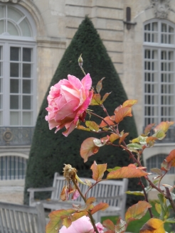 Musée Rodin (15)