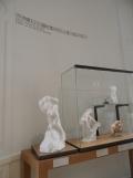 Musée Rodin (151)