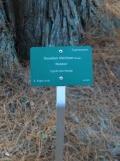 Parc de la Vallée-aux-loups (23)