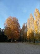 Parc de Sceaux (24)