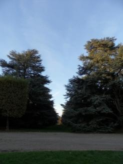 Parc de Sceaux (32)