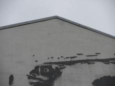 Alternative Berlin (71)